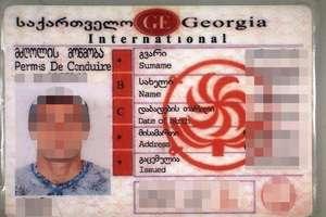 Gruzin próbował przechytrzyć funkcjonariuszy Straży Granicznej
