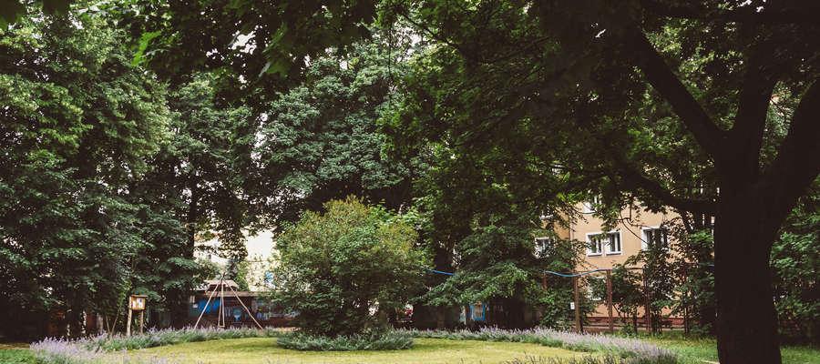 Tomasz Janus zaprojektował park kieszonkowy dla osiedla Podleśna