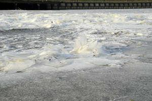 Co za widoki! Rzeka Elbląg zamarzła [zdjęcia]