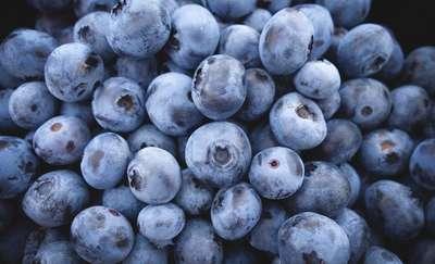 Popularny market wycofuje ze sprzedaży mrożone jagody. Powód - salmonella