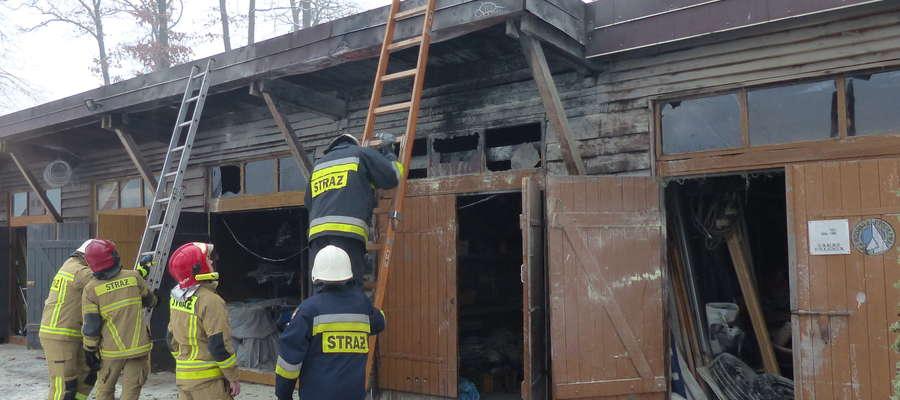 Pożar w przystani żeglarskiej pod Omegą - spaleniu uległ znajdujący się w budynku sprzęt żeglarski