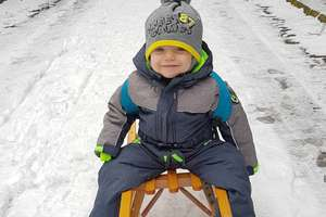 Zimowy Brzdąc: Franciszek Ambo