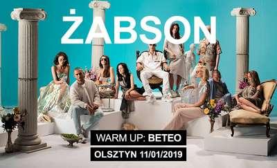 Koncert Żabsona w Olsztynie