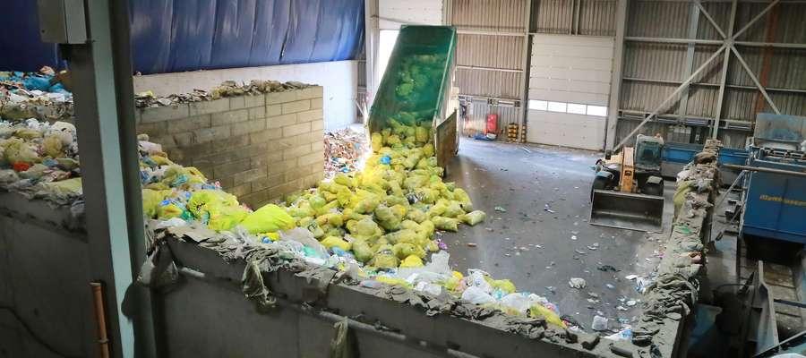 Od stycznia do końca lipca ubiegłego roku do ZGOK w Olsztynie trafiło ponad 8 tys. ton śmieci posegregowanych, czyli tych z kolorowych pojemników, a od stycznia do lipca tego roku już ponad 10 tys. ton.