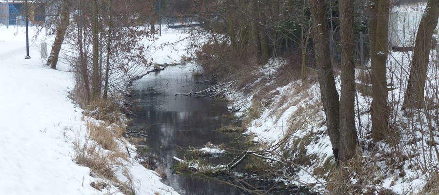 Widok na kanał od strony ulicy Kościuszki