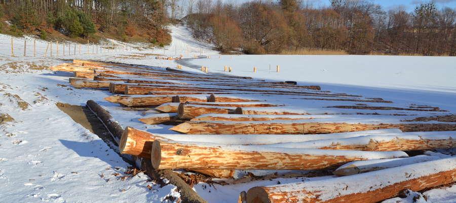 W dno jeziora wbijane są pale sosnowe