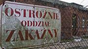 W pobliżu Elbląga odnotowano przypadek zachorowania na odrę. Elblążanie powinni bać się tej choroby?