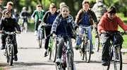 Kiedy rower, to rower? Sprawdzamy, co wolno rowerzystom na drogach
