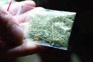 56-latek posiadał 133 gramy marihuany