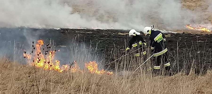 Pożar trawy 23 lutego. W akcji OSP Spytkowo