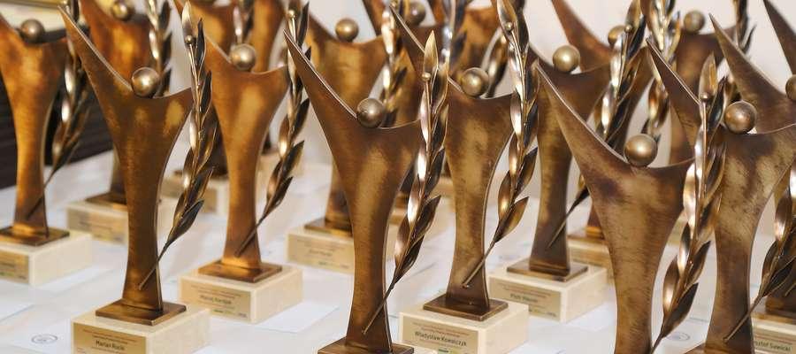Takie statuetki otrzymają sołtysi, którzy zdobędą najwięcej głosów