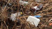 Sprzątanie nad Niegocinem (30 marca)