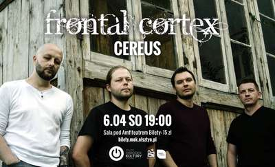 Frontal Cortex / Cereus