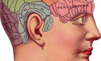Główka pracuje, czyli przez żołądek do… mózgu!