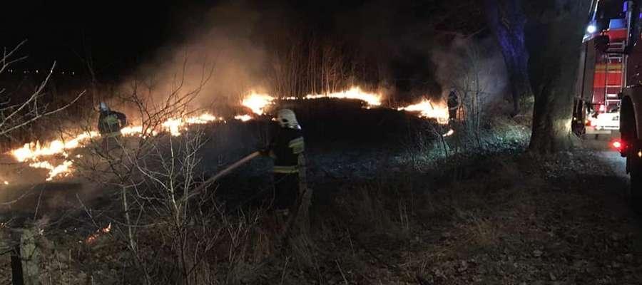 Strażacy z OSP Spytkowo 28 lutego 2019 r. gasili płonące trawy
