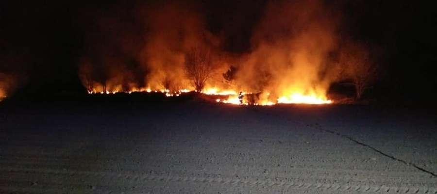 Pożar traw w okolicach Szwejkówka