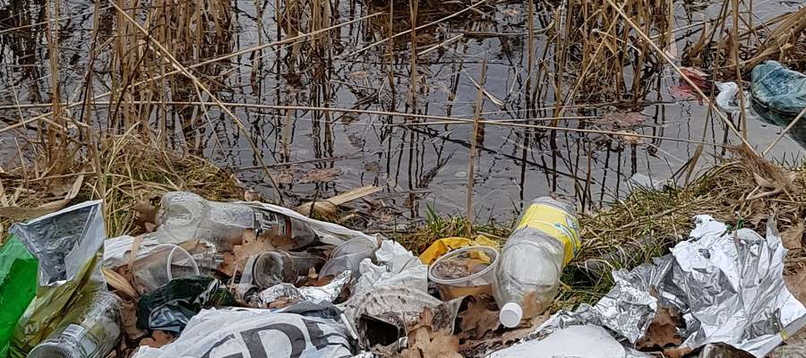 Śmieci na Jeziorem Kortowskim