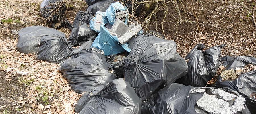 Nielegalne wysypisko w okolicy Mint w gminie Bartoszyce.