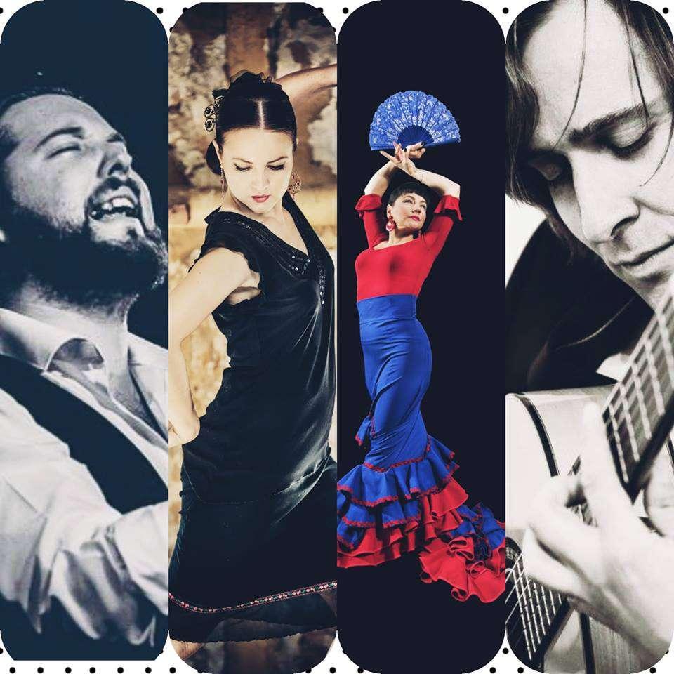 Gorące flamenco w Sowie - full image