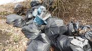 Nielegalne wysypiska śmieci to zbrodnia przeciw naturze