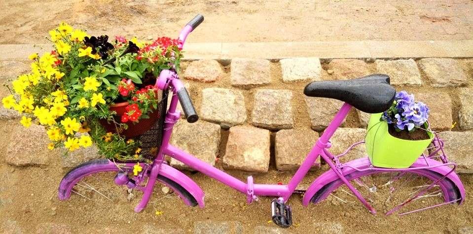 Różowy rower wzbudza emocje. Autor: