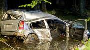 Opel uderzył w drzewo i wpadł do bagna [ZDJĘCIA]