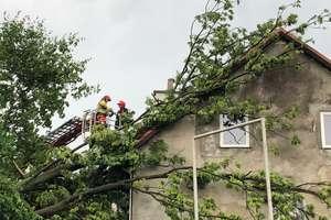 Burza, silny wiatr i ulewny deszcz nie ominęły powiatu lidzbarskiego
