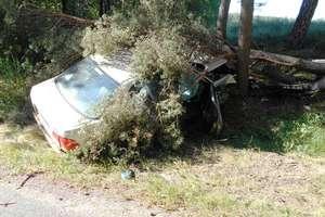 Stracił panowanie i uderzył w drzewo