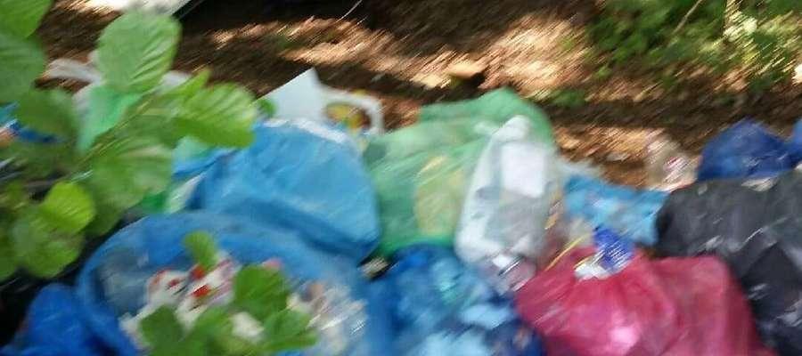 Zdjęcie śmieci pochodzące z Facebooka Ewy Jackowskiej