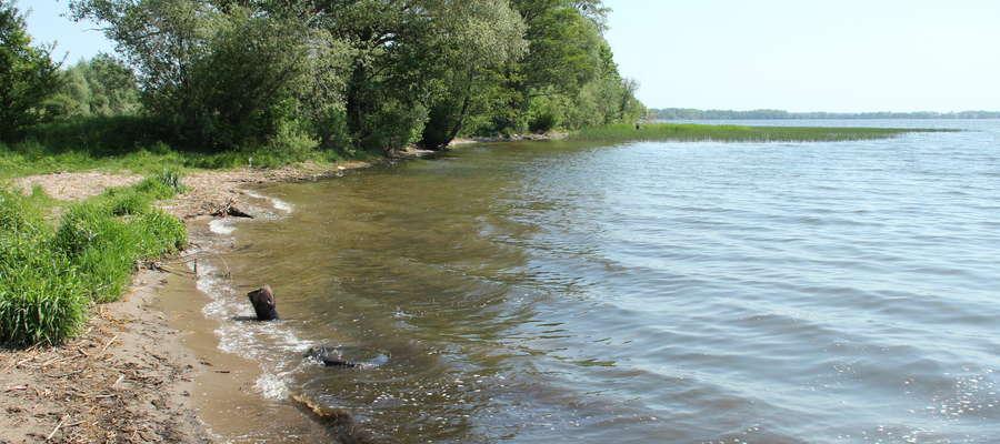 Jezioro Niegocin, dzika plaża