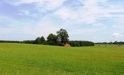 Rowerowa Obwodnica Olsztyna (27): Krajobraz po linczu