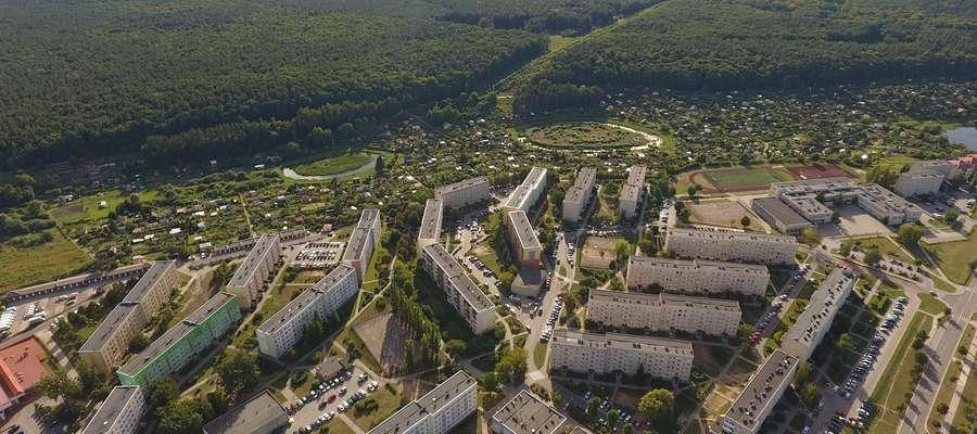 Sąsiedzkie sprzątanie lasu zaplanowano na 20 lipca
