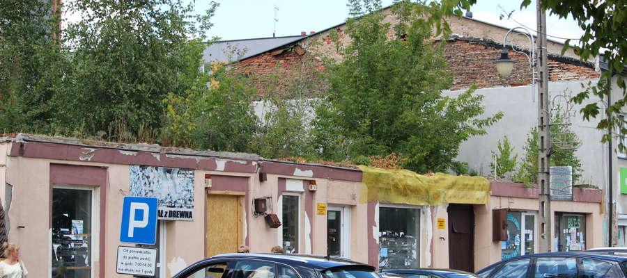 Drzewa rosnące na ruinach budynku są z roku na rok coraz większe