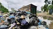 Śmieciowe absurdy [VIDEO]