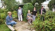 Ogródki czy nowe mieszkania? Mieszkańcy walczą o kawałek zieleni