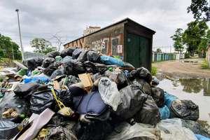 """Kto sprzątnie śmieci z """"nieistniejącej"""" działki w Olsztynie?"""