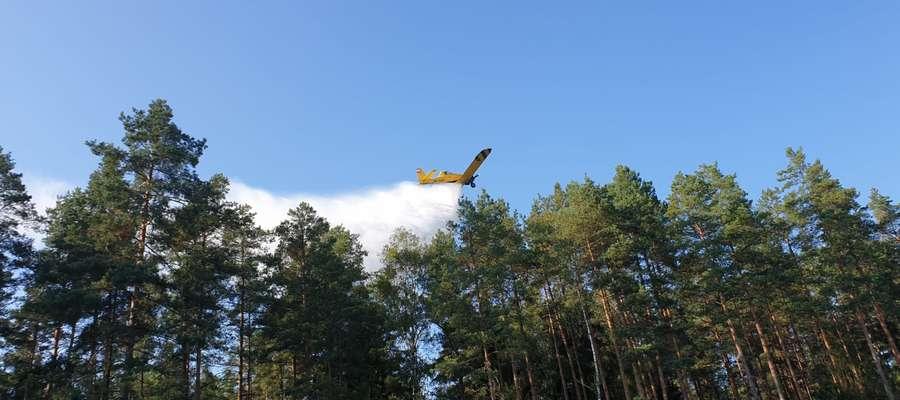 Do gaszenia lasu pod Samborowem wykorzystano dwa samoloty gaśnicze