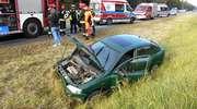 Opel wpadł do rowu [ZDJĘCIA]