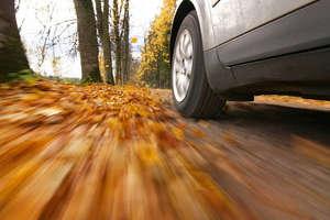 Kierowco, noga z gazu, jesień na drodze!