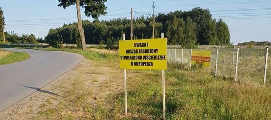 Takie tablice pojawiły się rok temu pod Ostródą. Także z powodu zarażonego nietoperza