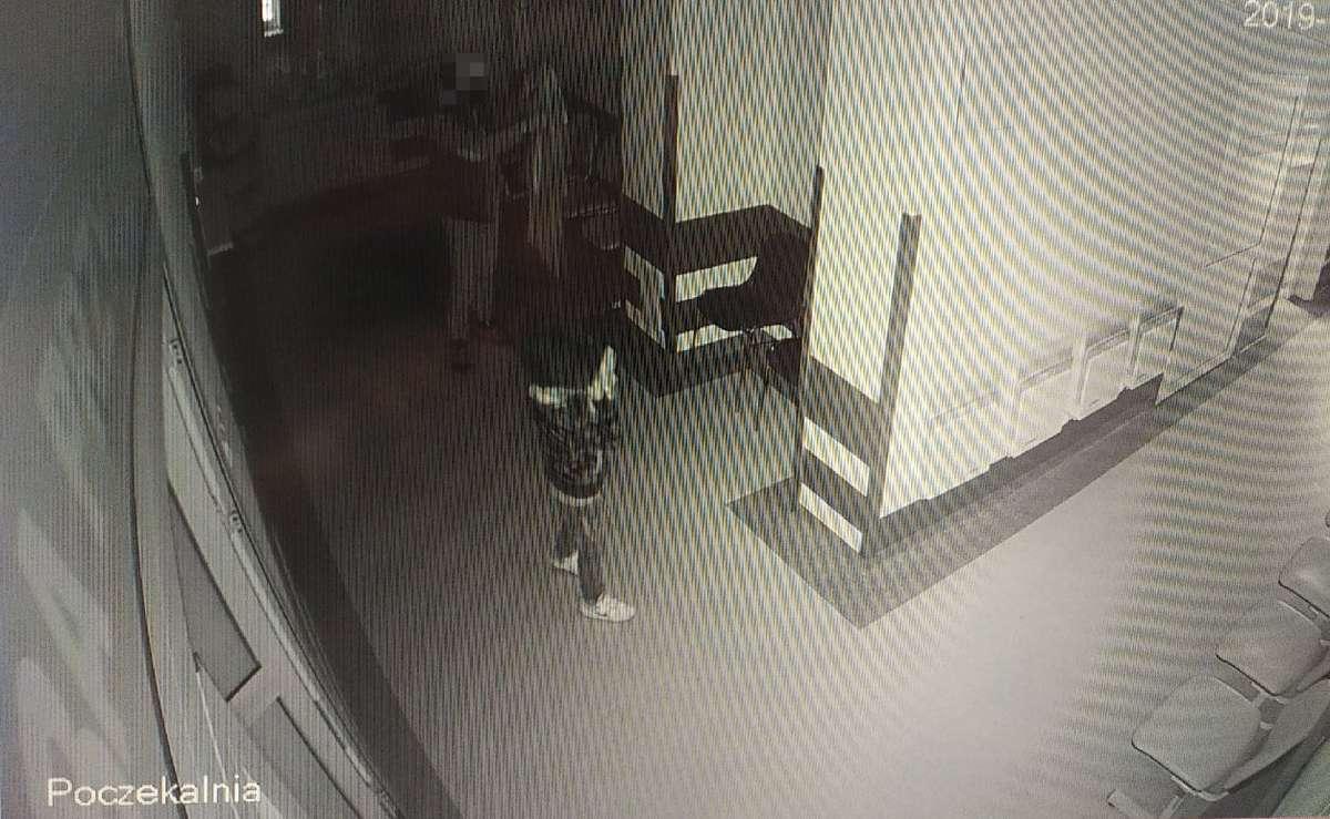 Kadr z nagrania kamery monitoringu.