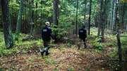 Służby przez dwie godziny szukały w lesie 86-letniej grzybiarki