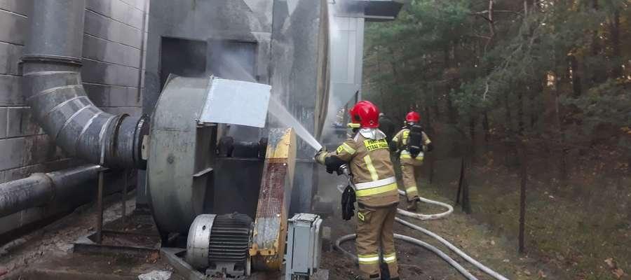 Ogień pojawił się w wyciągu, którego zadaniem jest wyciąganie na zewnątrz stolarni pozostałości poprodukcyjnych, takich jak wióry i pył