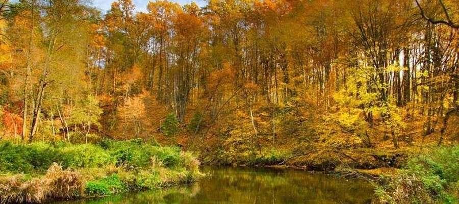 Jesień nad Łyną.