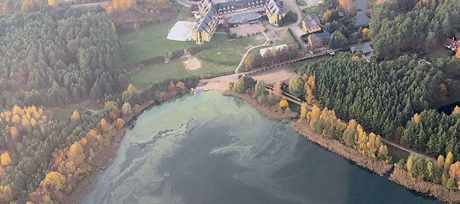 """""""Ratujcie jezioro!"""". Sprawdzamy, co dzieje się z jeziorem Tyrsko w Olsztynie"""