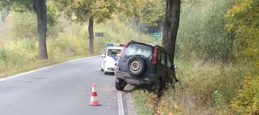 Samochód uderzył w drzewo. Jedna osoba trafiła do szpitala