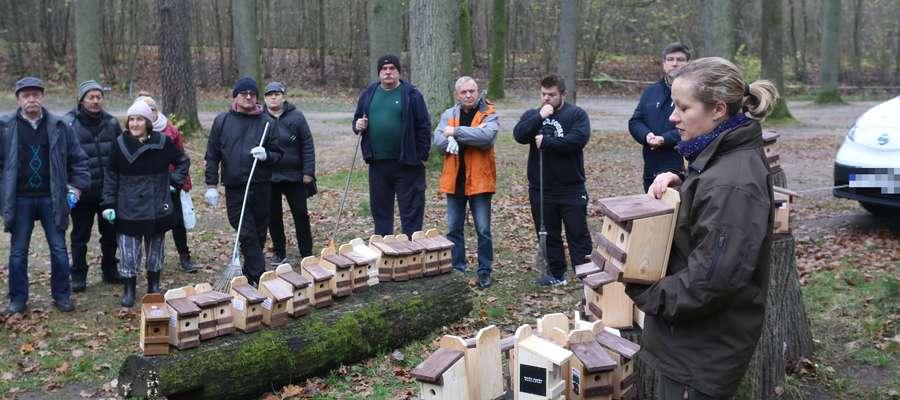 Wolontariusze zbudowali 50 domków lęgowych