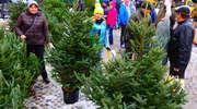 W niedzielę na Jarmark Bożonarodzeniowy do Nowego Miasta