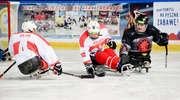 Międzynarodowy turniej w hokeju na sledgach [ZDJĘCIA]