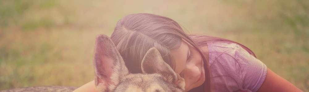 Kontakt ze zwierzętami niesie ze sobą wiele korzyści. Psy pomogły już tysiącom dzieci
